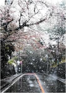 優秀賞「春へ向かう」大石健史朗